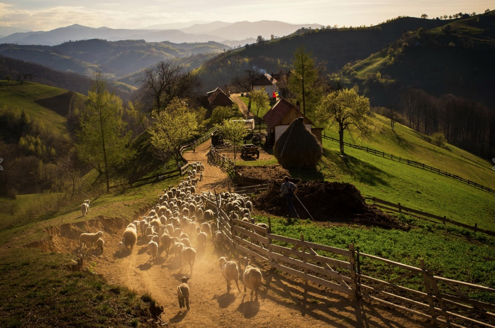 A spring evening in a Romanian village. By Catalin Caciuc